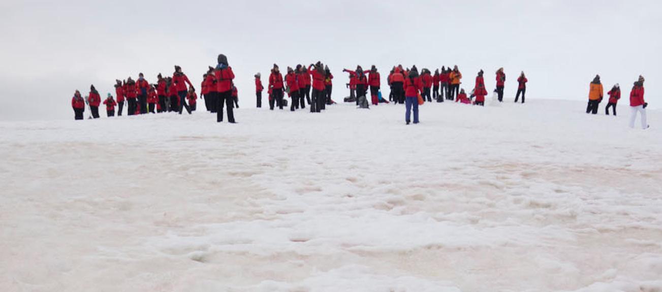 expedición de mujeres científicas a la Antártida de Acciona