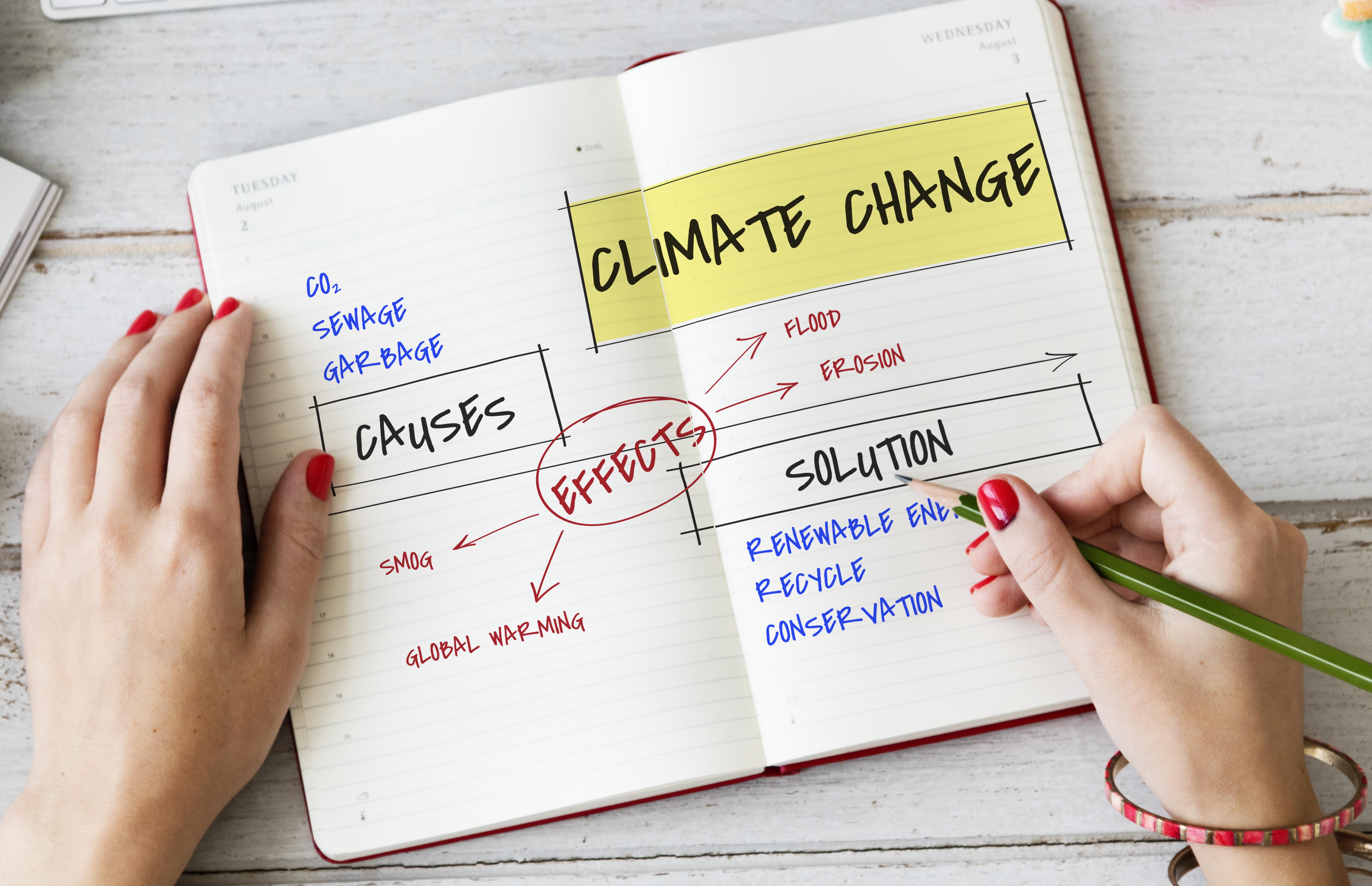 Pacto Mundial de Naciones Unidas y su informe sobre cambio climático