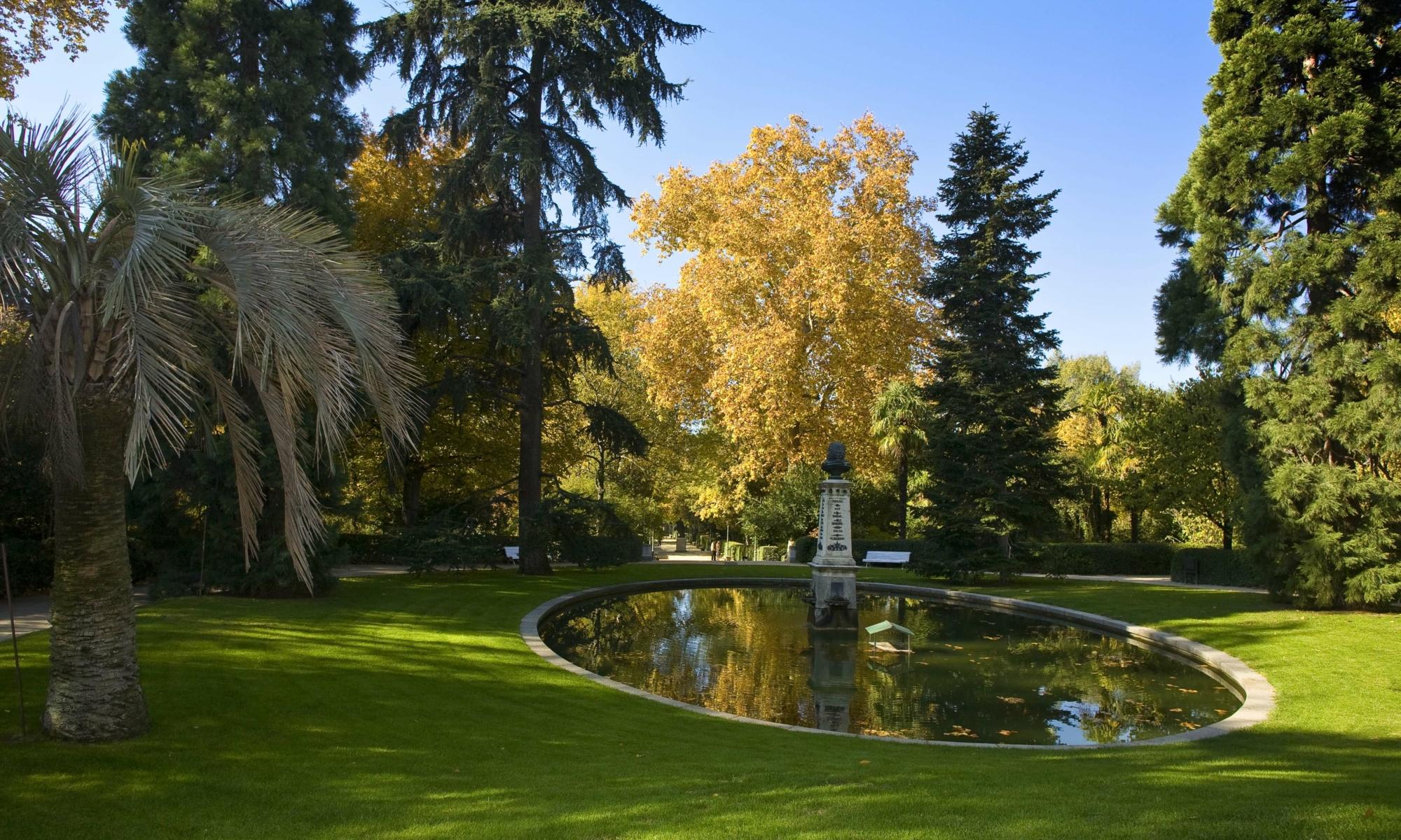 Madrid Ciudad Arbórea